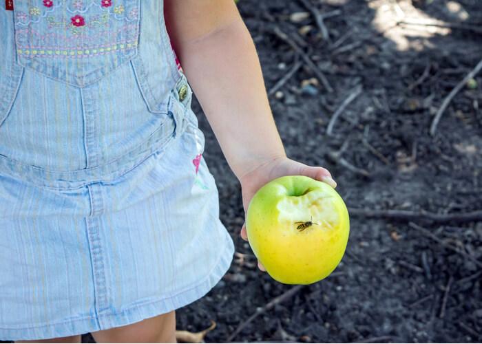 wesp op appel van kind