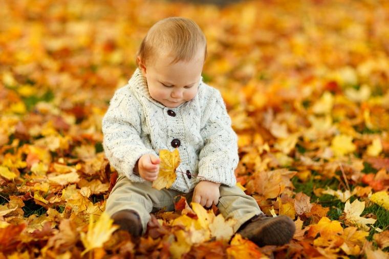 3 x leuke herfstactiviteiten met kids - Coulissan deur je dressing bladeren ...