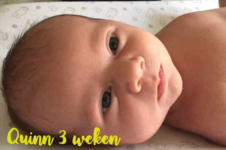 3 weken oud